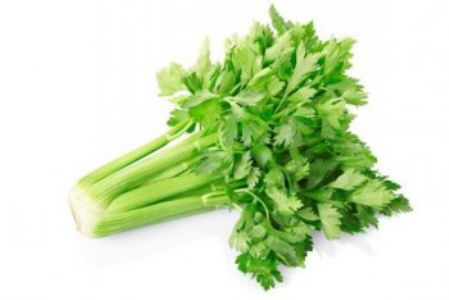 产后坐月子可以吃芹菜、西芹吗?